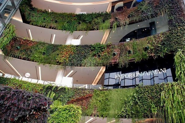 Green Home Building And Sustainable Architecture Living Walls